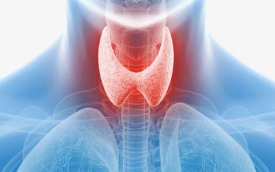 Choroba Hashimoto-co o niej wiadomo? Niestety występuje u coraz większej liczby osób. Należy do grupy schorzeń  autoimmunologicznch.